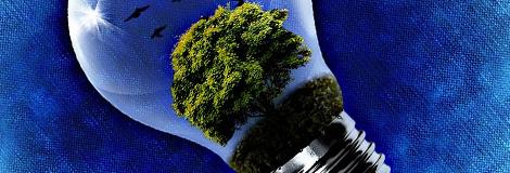 environment&sustainability